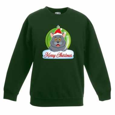 Kersttrui grijze kat poes kerstbal groen voor jongens en meisjes